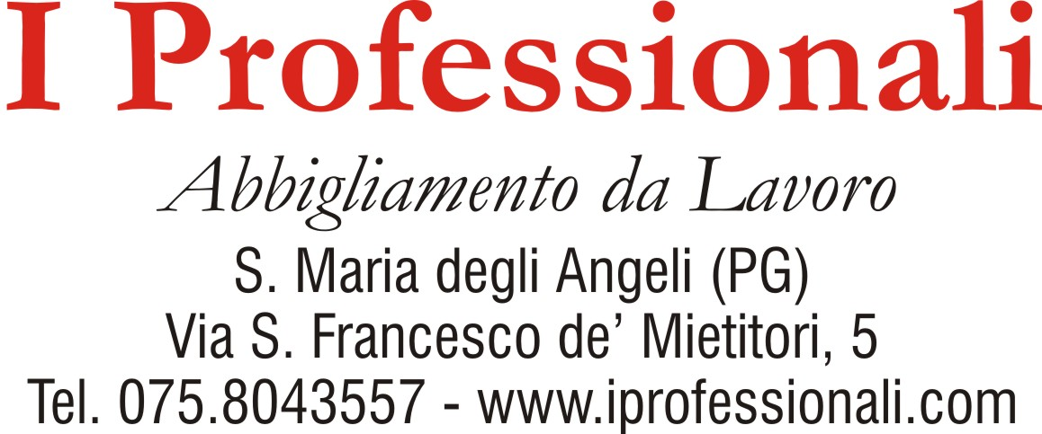 I PROFESSIONALI